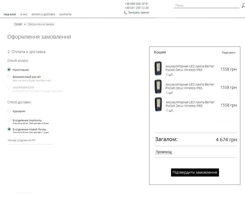 скриншот оплата и доставка